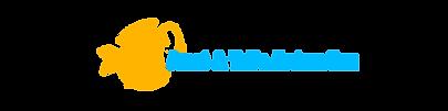 logoWebBanner_orangefish.png