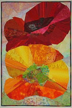 TRANSlucent - California Poppy