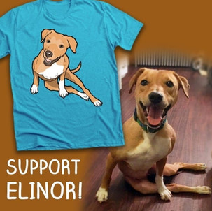 Elinor T-Shirt Design