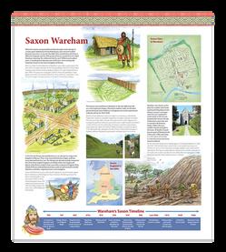 Wareham Museum Saxon Exhibition