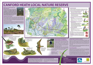 Canford Heath Local Nature Reserve board and leaflet