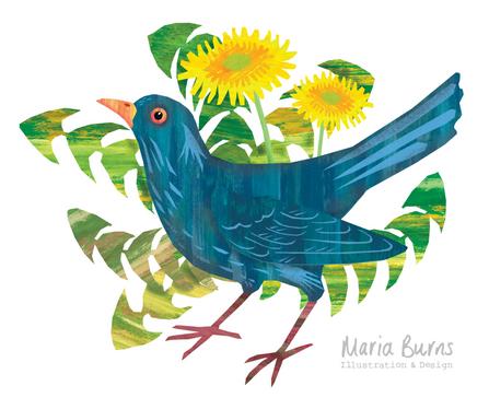 Blackbird & Dandelion