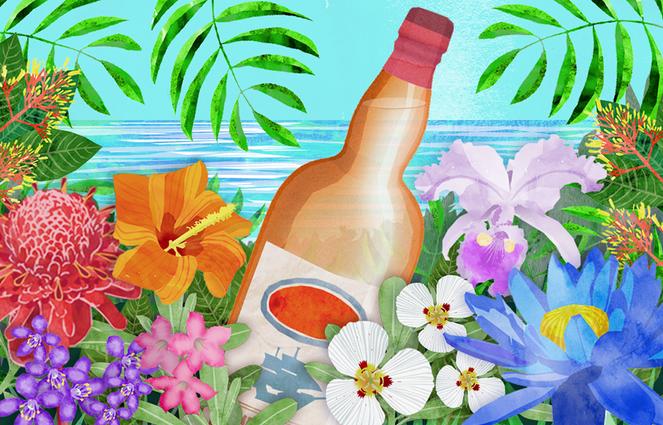 Rum Bottle Illustration