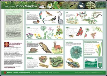 Priory Meadow interpretation Projest