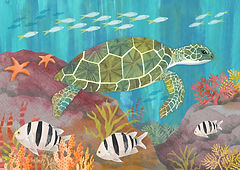 Turtle_underwater_maria burns.jpg