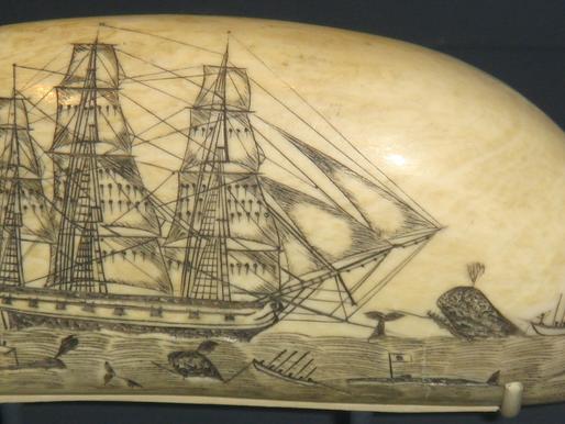 «Historias de marinos» - El verdadero Moby Dick