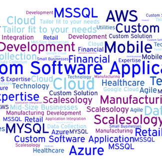 When is it time for a custom software application?