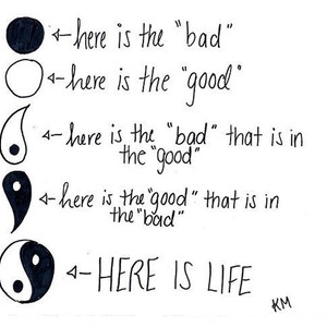 life-take-the-good-with-the-bad-and-the-bad-with-the-good_fb_1495759