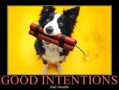 good-intentionsmaupin