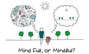 mind.full.mindful