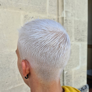 Decoloration Blond Polaire Argent