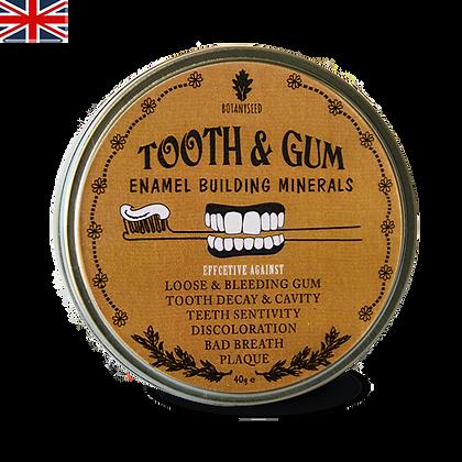 Tooth & Gum