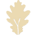Botanyseed_FavIcon_Beidge_DS.png