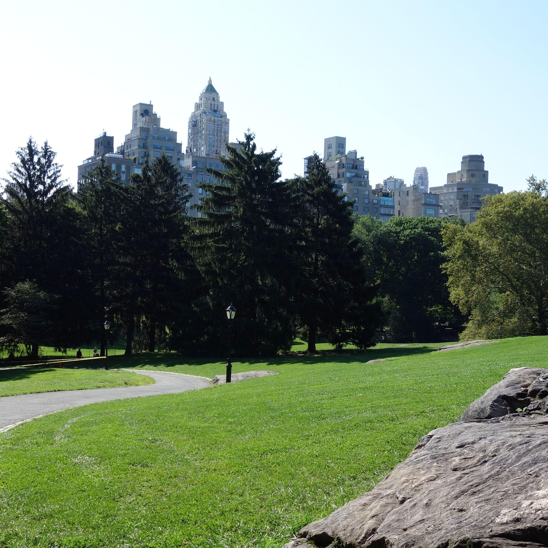 central park + 5th avenue buildings