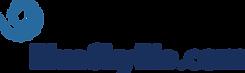 Logo no background color.png