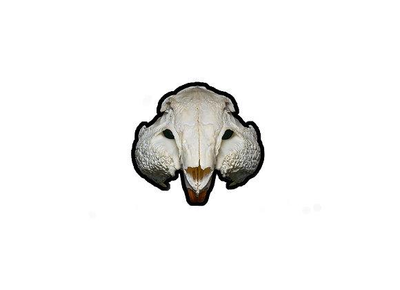 Adesivo crânio de paca