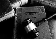 Immigration BW_edited.jpg