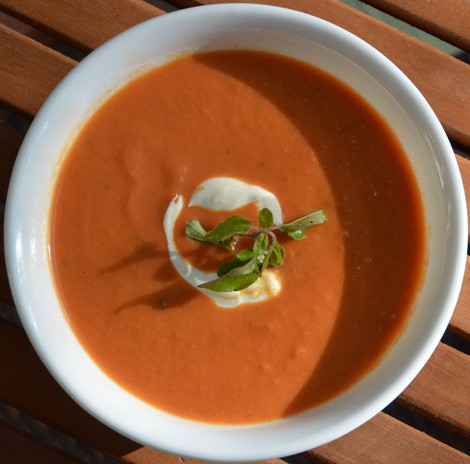 Daily Soup Specials
