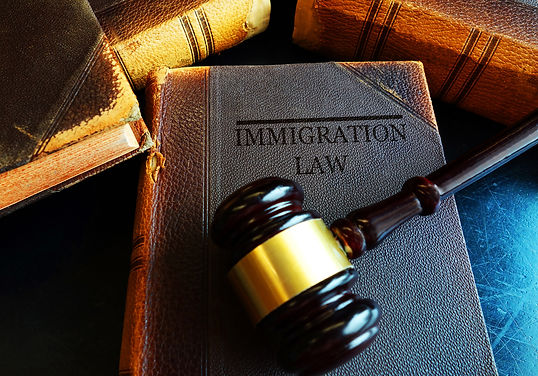 Sterlig Law Immigration Resources