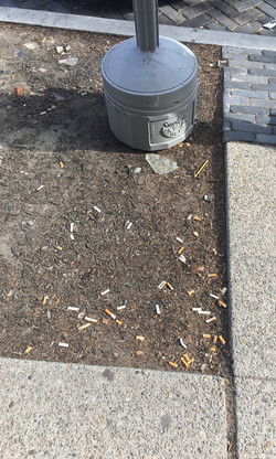 Tossed cigarette butts