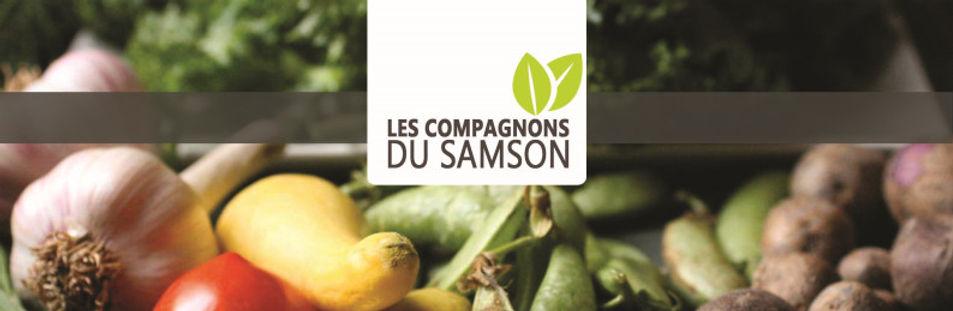 bannière des compagnons du Samson