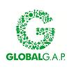 global-gap.png