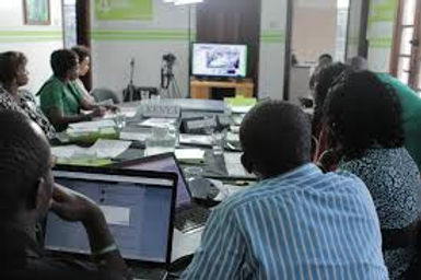 online conference photo.jpg