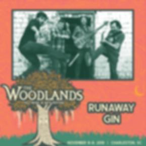 RunawayGin-01.png