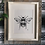 Thumbnail: Izzy Bee