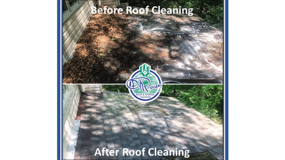 Before & After Residential - Roof Cleani