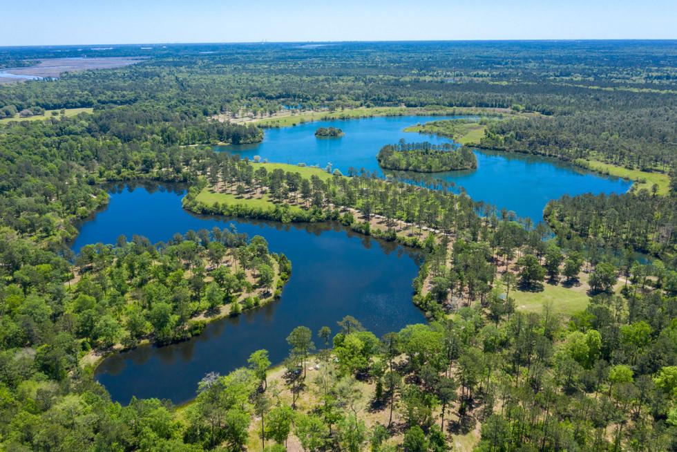 Palmetto and Lake Charleston copy.jpg