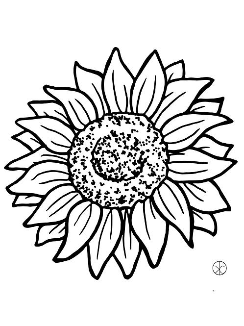 Sunflower Print