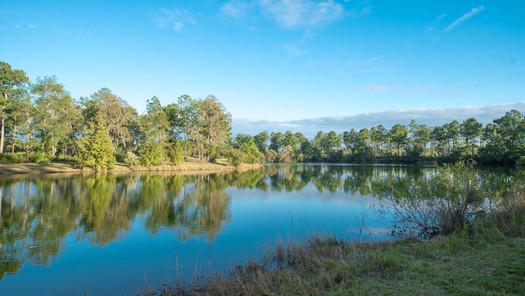 Palmetto Lake-5.jpg