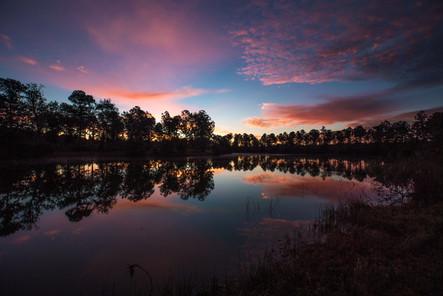 Palmetto Lake-4.jpg