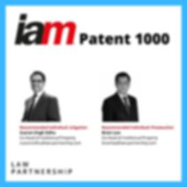 iam Patent 1000.jpg