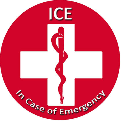 ICE MED Consultation