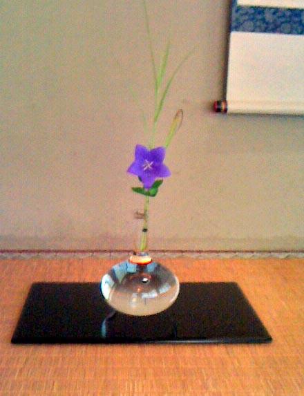 桔梗と十和田葦