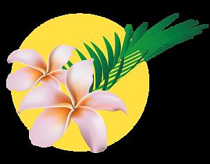 fleurs-soleil.png