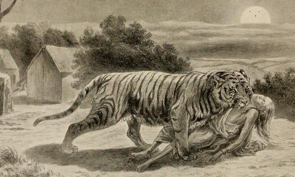 2020-01-04-podcast-episode-279-the-champawat-tiger.jpg
