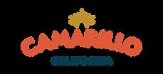 VCAM_Logo_FullColor.png