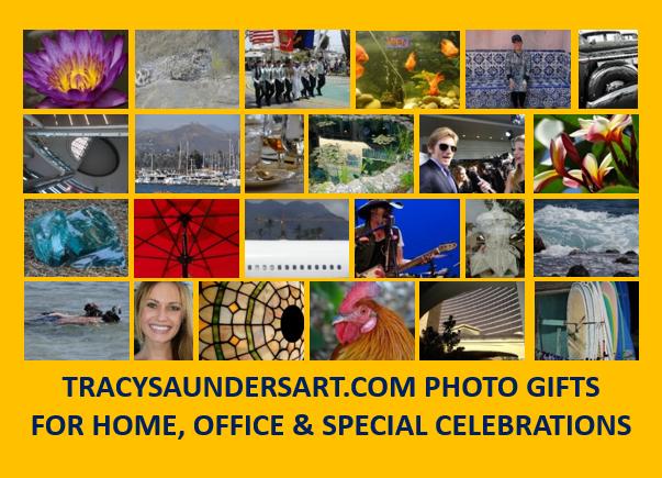 TracySaundersArt.com
