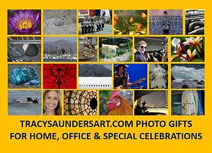 TracySaundersArt.com.png