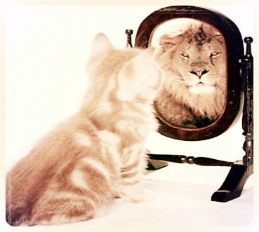 chat-lion_edited.jpg