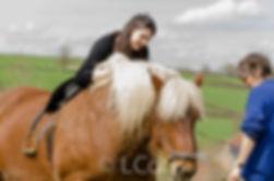 débourrage de votre cheval avec vous