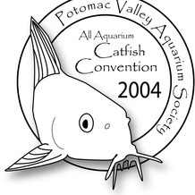 All-Aquarium Catfish Convention 2004