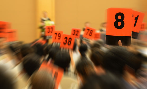 People holding auction paddle to buy fro