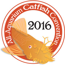 All-Aquarium Catfish Convention 2016 Logo