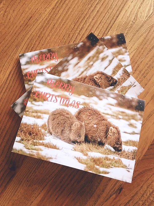 Pack of 10 Xmas Cards