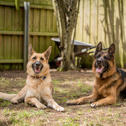 Mollie, Emmy and Jake (45 of 82).jpg