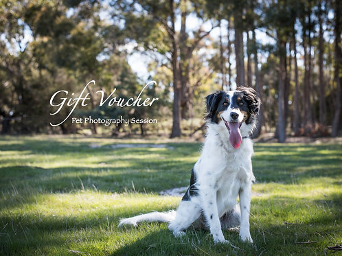 Gift Voucher - The Wolf Pack